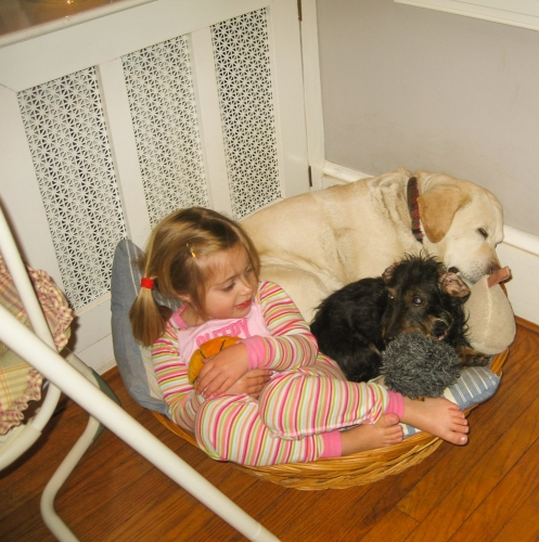 Emmy and dogs on the dining room floor. Charlotte's baby swing is on the left.
